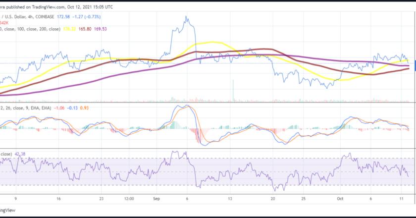 Litecoin price analysis: LTC struggling to defend the $170 level